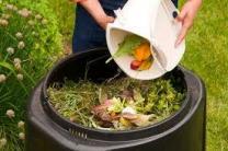 image compost.jpeg (23.5kB)